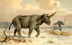 Nine's Path pleiadian elasmotherium unicorn