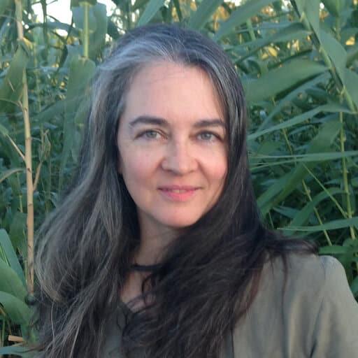author & Pleiadian contactee Maryann Rada