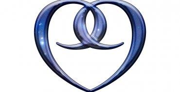 Nine's Path Seal