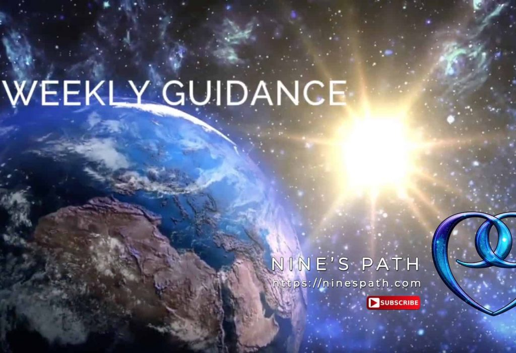 Weekly Guidance