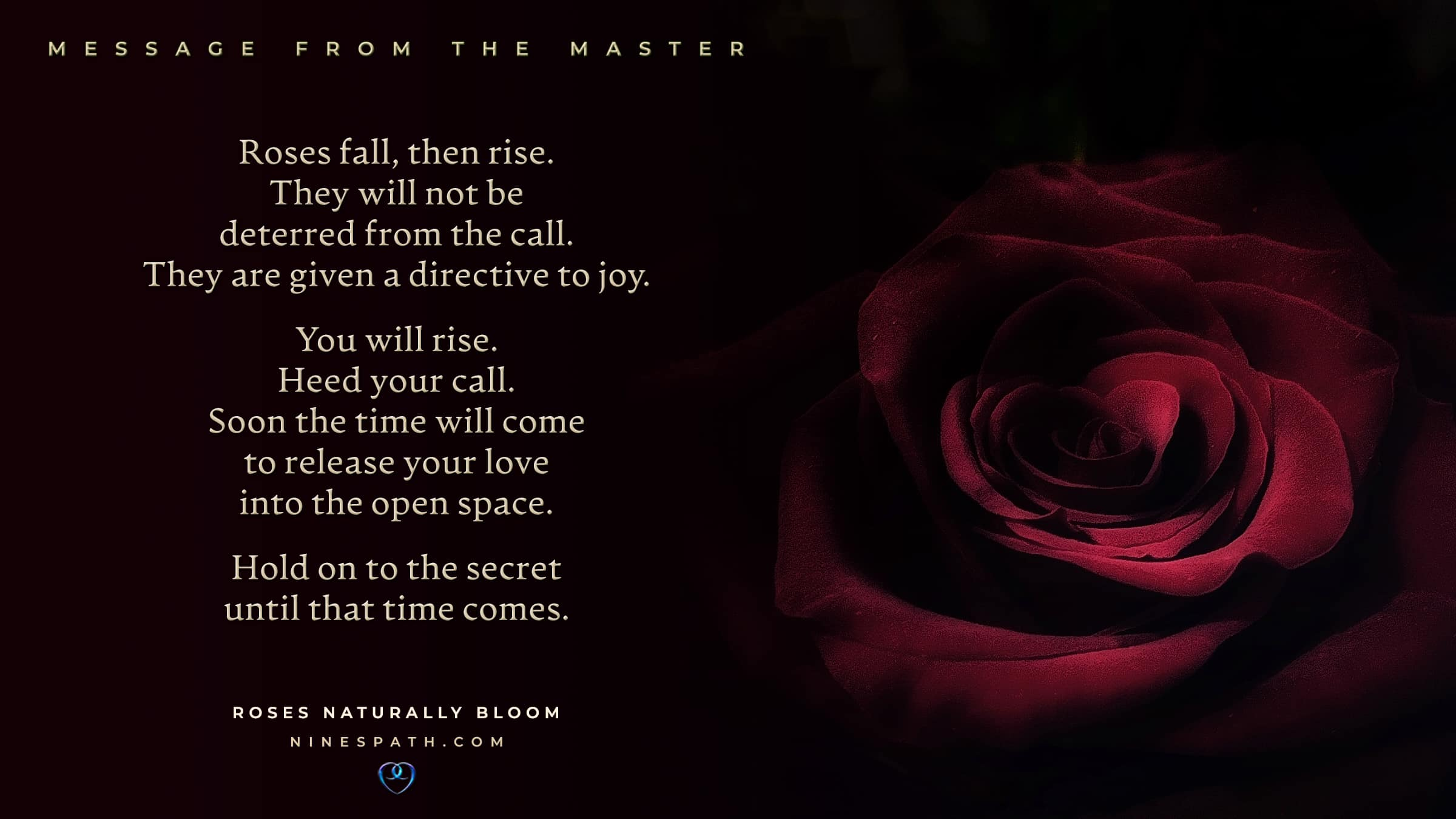 Nine's Path Order Master roses