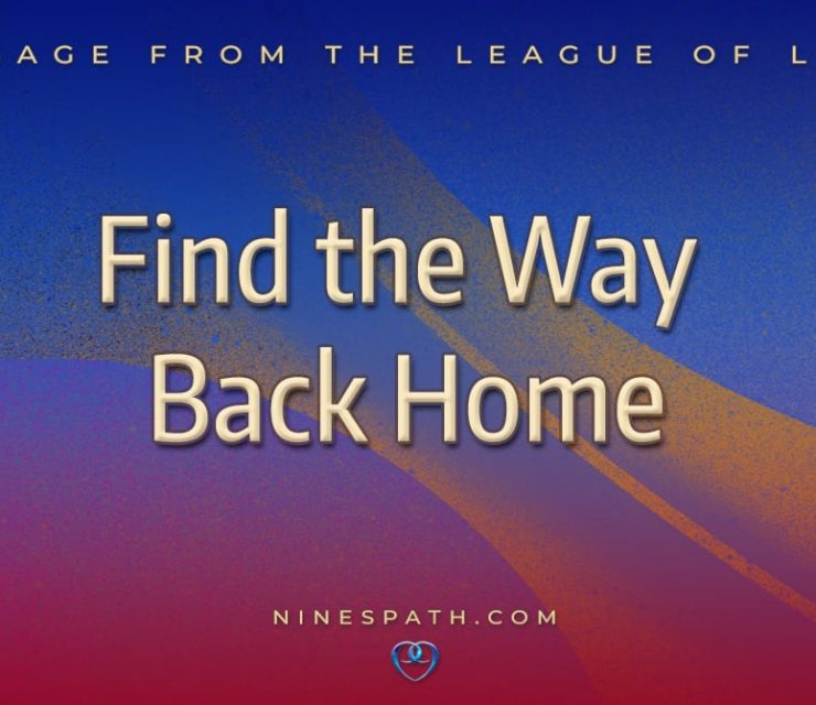 Find the Way Back Home
